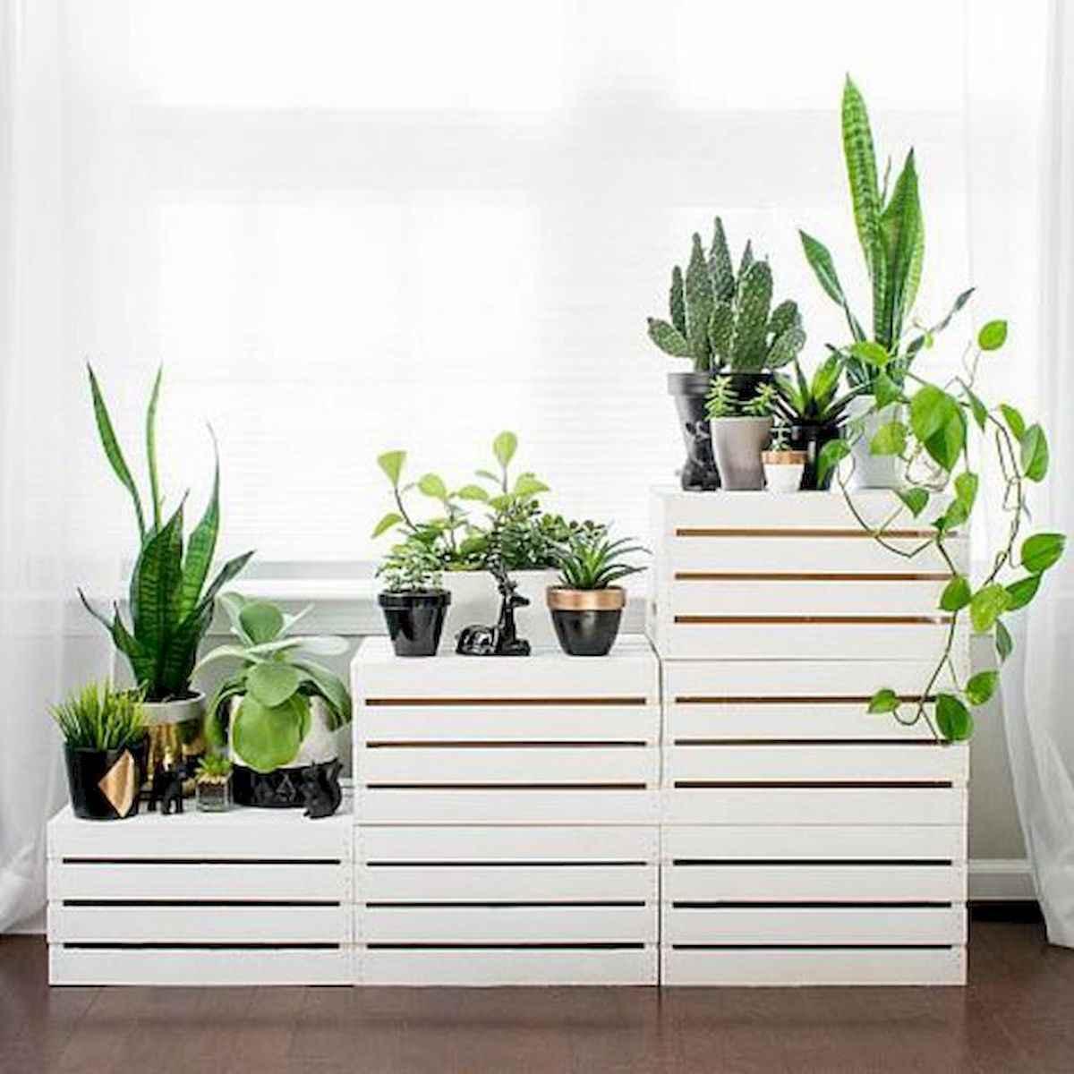 50 Best Indoor Garden For Apartment Design Ideas And Remodel (35)
